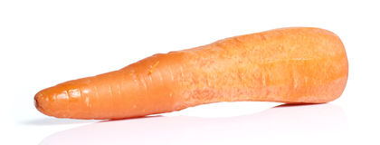 Big Carrot on White background Stock Photography