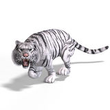 Big Cat White Tiger Stock Image