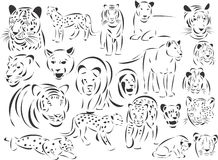 Big Cats Royalty Free Stock Image
