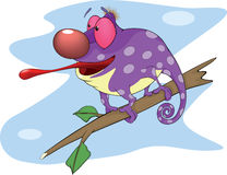 Big Chameleon cartoon. Cheerful violet chameleon with a long tongue Royalty Free Stock Image