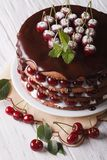 Big cherry cake with chocolate icing vertical Stock Images