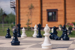 Big chess on a background of  wooden house and grass field Royalty Free Stock Images