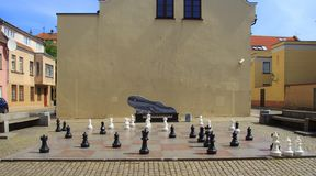 Big chess on a background of wooden house and grass field royalty free stock photo