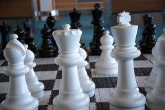 Big chess board indoor white pieces. Huge chess figures no people Royalty Free Stock Images