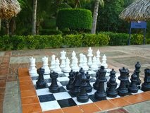 Big chess pieces on a chessboard Royalty Free Stock Photo