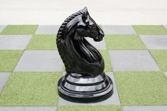 Big Chessboard - Big Horse Chess. Big Chessboard green and white color - Big Horse Chess black color Royalty Free Stock Photography