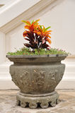 A big Chinese flowerpot in Thailand temple. Royalty Free Stock Photo