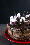 Big chocolate cake with chocolate frosting and cherry Royalty Free Stock Photos