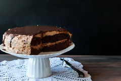 Big chocolate cake with chocolate frosting Royalty Free Stock Image