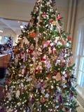 big christmas tree Στοκ Φωτογραφίες