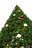 Big Christmas Tree Stock Images