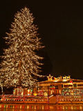 Big Christmas Tree 2. A large evergreen tree is decorated with from top to bottom with Christmas lights Royalty Free Stock Photos
