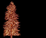 Big Christmas Tree 3. A large evergreen tree is decorated with from top to bottom with Christmas lights isolated on black Royalty Free Stock Photos