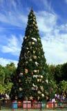 Big Christmas Tree. A very big christmas tree in Florida Stock Photo