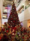 big christmas tree Στοκ εικόνα με δικαίωμα ελεύθερης χρήσης
