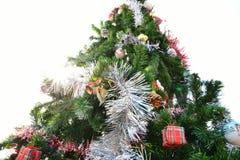 big christmas tree Στοκ Εικόνες