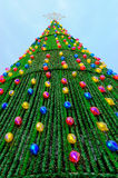 Big christmas tree Stock Image