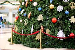 Big Christmas Tree Royalty Free Stock Photo