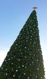Big Christmas tree Royalty Free Stock Photos