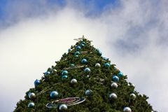 Big christmas tree.Bottom up view royalty free stock image