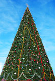 Big Christmas tree in a city Royalty Free Stock Images