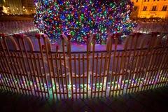Big christmas tree Stock Photos