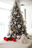 Big Christmas tree. White studio light room design decorative x-mas tree, big hall prepare and decorated for Christmas & New Year party. Big red balls and Royalty Free Stock Photo