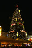 Big Christmastree. One of the biggest Christmastrees of the world. The tree is 45 metres high and weighs 30 metric tons. There is of 1700 red spruces and 13000 stock photos