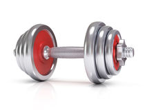 Big chrome dumbells Royalty Free Stock Image