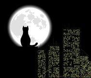 Big city cat. Big city ang cat, background,  vector illustration Royalty Free Stock Photos