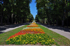 Big city park with flowers Stock Images