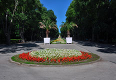 Big city park with flowers Royalty Free Stock Image