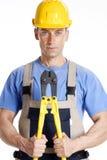 Big clamb constructor. Stock Photography