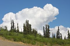 Big cloud. And trees on a hill Stock Photography