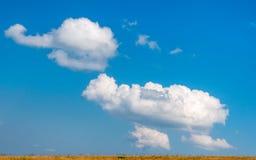 Big cloud like a huge elephant. Royalty Free Stock Image