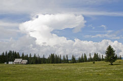 Big cloud on the meadow Stock Image