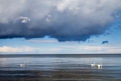 Big cloud over Baltic. Royalty Free Stock Photos