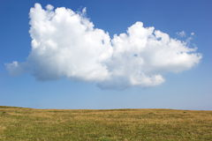 Big cloud over the plain in summer day Royalty Free Stock Photo