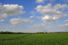 Big Cloudy Sky over Green Fields Royalty Free Stock Images