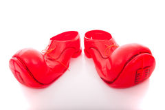 Free Big Clown Shoes Royalty Free Stock Photos - 11495438