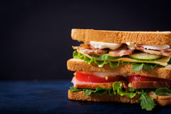 Big Club sandwich with ham, bacon, tomato, cucumber, cheese, eggs and herbs. On dark background stock images