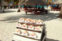 Big cockleshells for souvenirs. Isla Saona, La Romana, Dominican republic Stock Photo