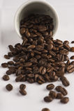BIG COFFEE BEANS fall from the white cup. Italian black COFFEE BEANS with cup Royalty Free Stock Photography