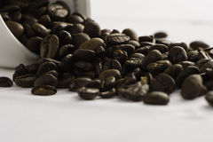BIG COFFEE BEANS with with white cup closeup. Italian black COFFEE BEANS with cup Stock Photo