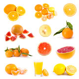 Big collection of citrus fruits Stock Images