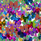 Big collection of colorful butterflies. Vector Royalty Free Stock Photos