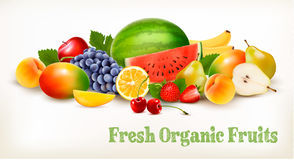 Big collection of different fresh fruit. Stock Photos