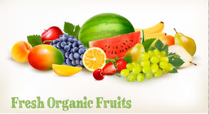 Big collection of different fresh fruit. Royalty Free Stock Photo