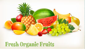 Big collection of different fresh fruit. Stock Image