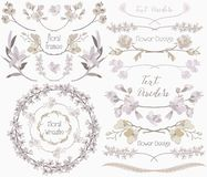 Big Collection of Floral Design Elements, Dividers, Frames Royalty Free Stock Photography